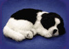 fur animal toy, sleeping pets