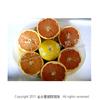 葡萄柚批發