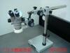 三目立體顯微鏡+萬向底座