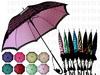 雙層蕾絲直傘
